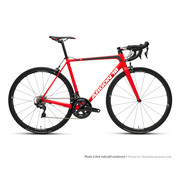 ARGON 18 Gallium CS Kit 2 Ultegra 2020