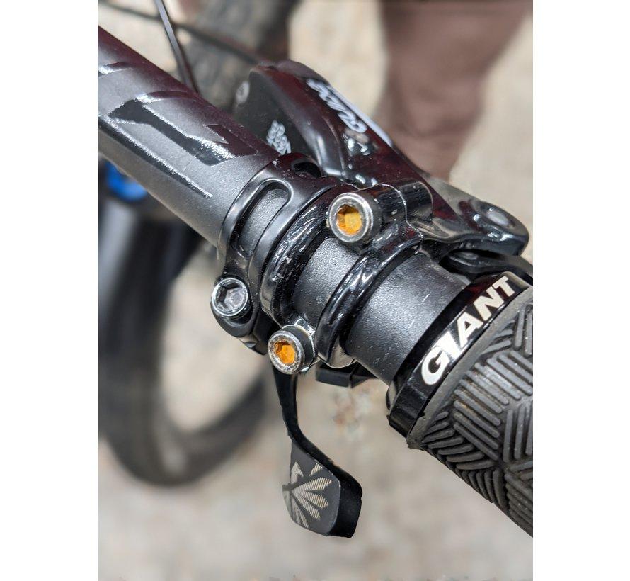 Trance Advanced Pro 29er 1 2020 - Vélo montagne All-mountain double suspension (DEMO)