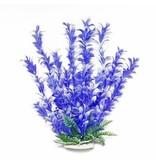 Aquatop BACOPA 12IN BLUE/WHITE