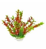 Aquatop Green Red Plant