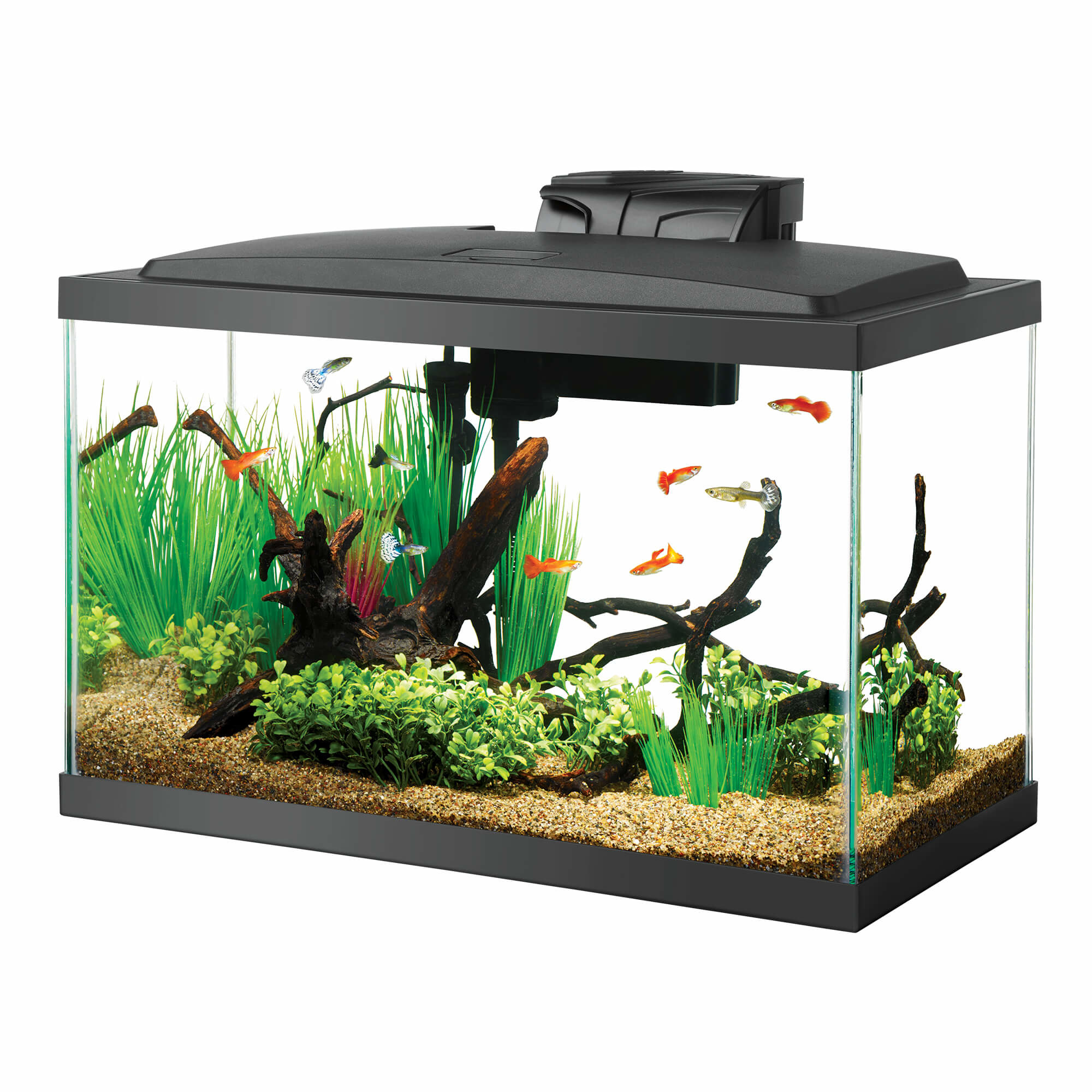 Aqueon Aqueon 10 gallon LED Pre Pricekit