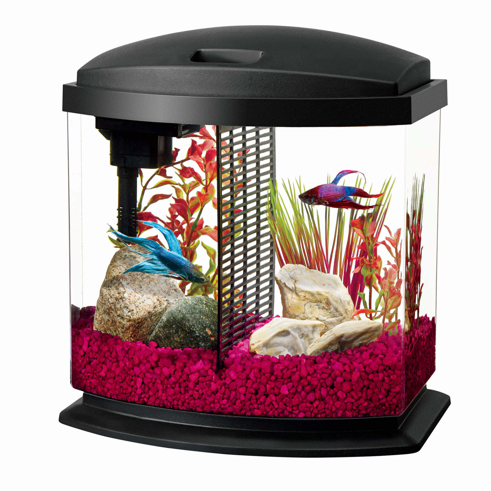 Aqueon LED BETTA BOWL KIT BLK 2.5G BLK