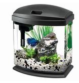 Aqueon Mini Bow 1 gallon betta kit w/filter and light