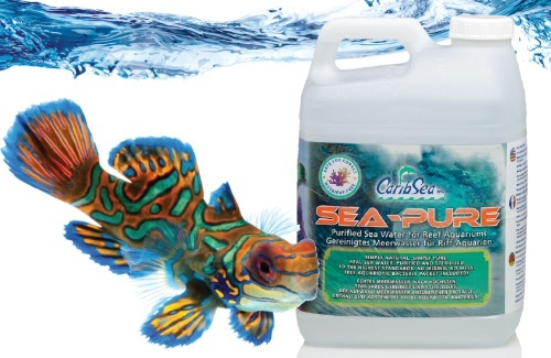 Carib Sea SEA-PURE SEAWATER 4.4G