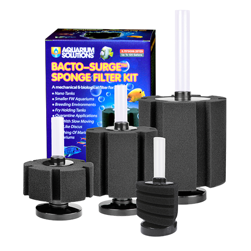 Hikari Hikari Sponge Filter up to 75 gallon