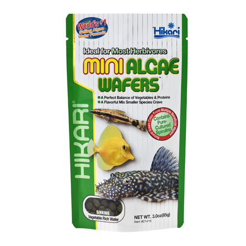 Hikari MINI ALGAE WAFERS  3OZ