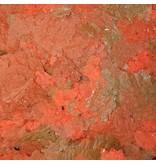 Omega Sea Cichlid Flakes 2.2 oz