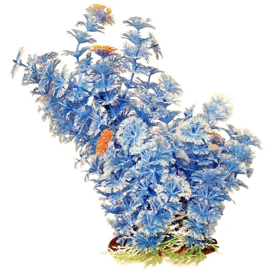"Poppy Pet Ambuila Blue 12"""
