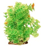 Poppy Pet Ambuila Plant green 12""
