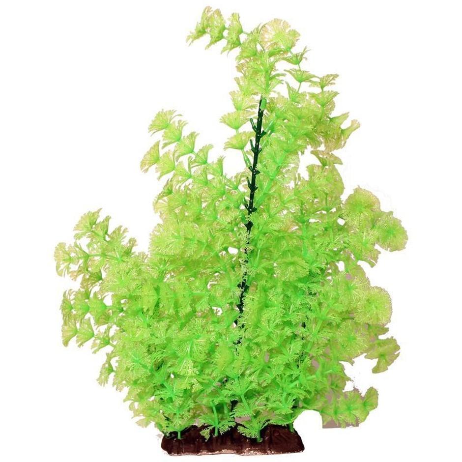 """Poppy Pet Ambulia Lime green 16"""""""