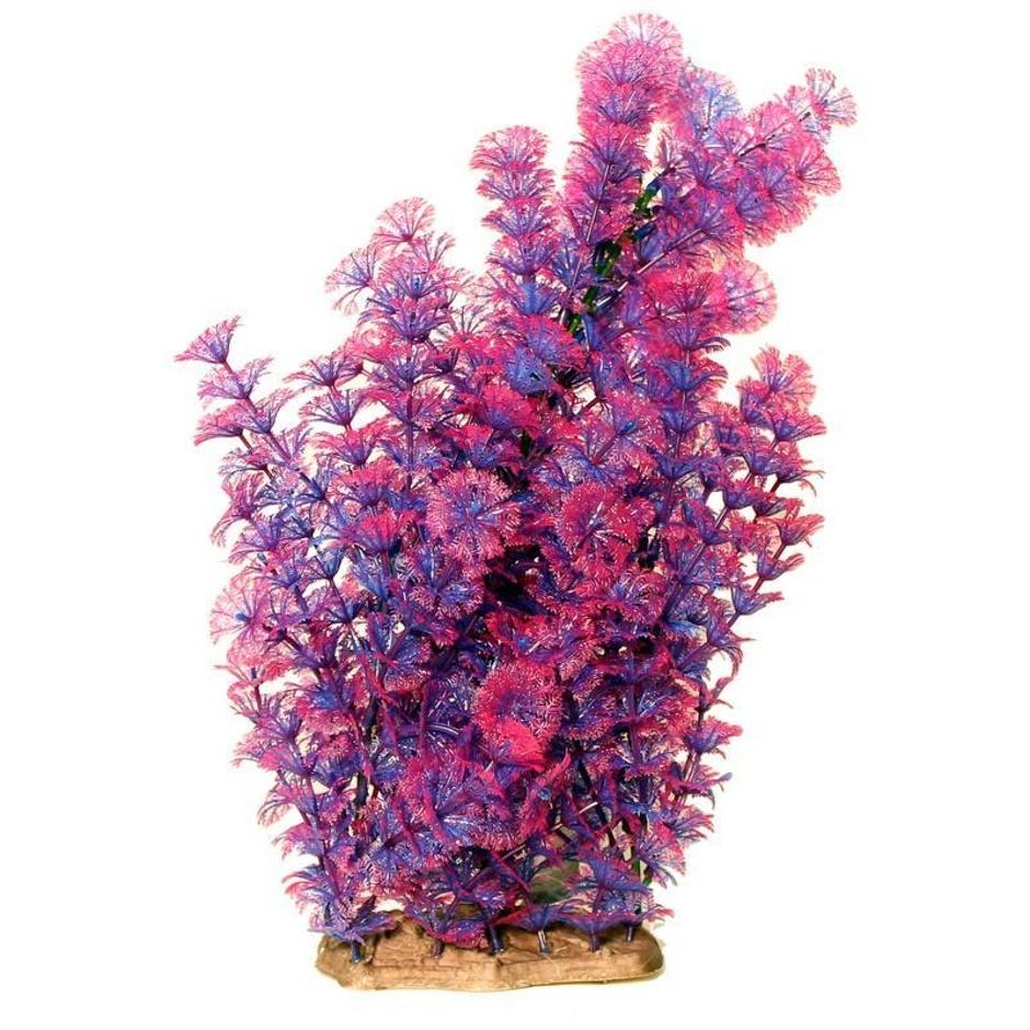 """Poppy Pet Busy Ambulia Purple 16"""""""