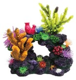 Poppy Pet Coral Reef Formation 8x5x8
