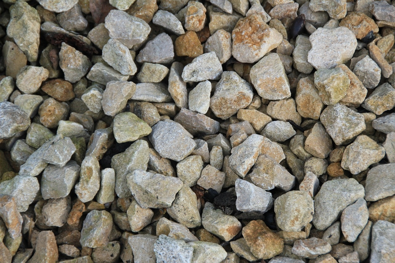 Dig in and Learn All About Gravel and Substrate in your Aquarium