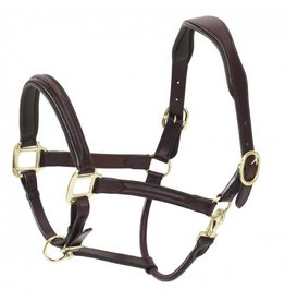 Ovation Fancy Stitch Raised Padded Halter