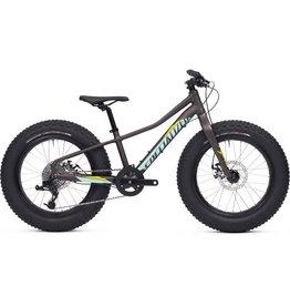 Specialized Bikes FATBOY 20