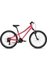 Specialized Bikes HOTROCK 24 (Used)