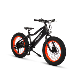 Pedego Electric Bikes Trail Tracker IV 20""