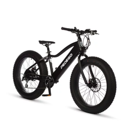 Pedego Electric Bikes Trail Tracker IV 24""