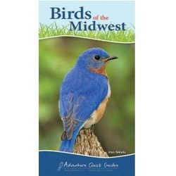 Bird of the Midwest Quick Guide