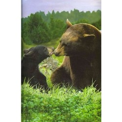 Black Bear Blank Journal