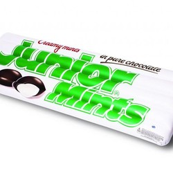 Giant Box of Junior Mints Pool Float