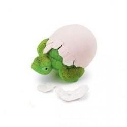 Hatch'ems - Turtle Eggs