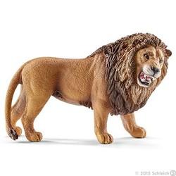 Lion, Roaring
