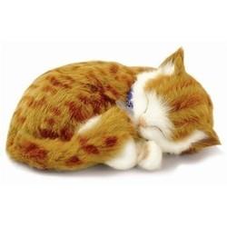Perfect Petzzz Orange Tabby Kitten