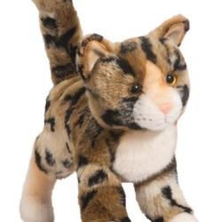 """Tashette - Bengal Cat 12"""""""