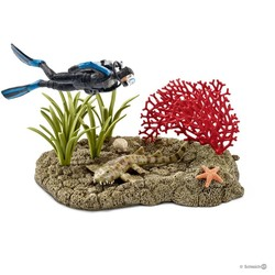 Coral Reef Diver
