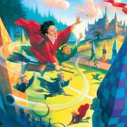 Harry Potter - Quidditch Puzzle