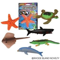 "6"" Magic Growing Sea Animals Assorted Styles"