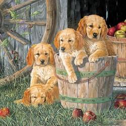 Puppy Pail 1000 Piece Puzzle