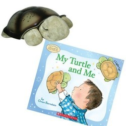 My Turtle and Me Book