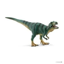 Juvenile Tyrannosaurus Rex
