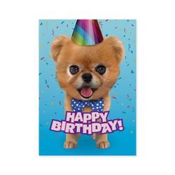 Birthday Cards - Teddy Bear Pomeranian Foil Card