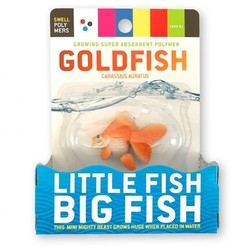 Swell Polymer Gold Fish