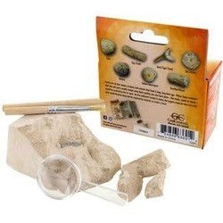 Fossil Mini Excavation Kit