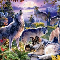 Wolf Pack - 1000 Piece Puzzle