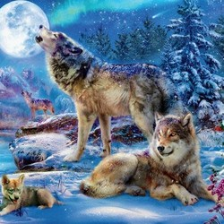 Winter Wolf Family - 1000 Piece Puzzle