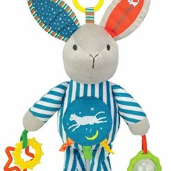 Goodnight Moon Activity Bunny