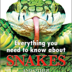 Everything You Need Snakes