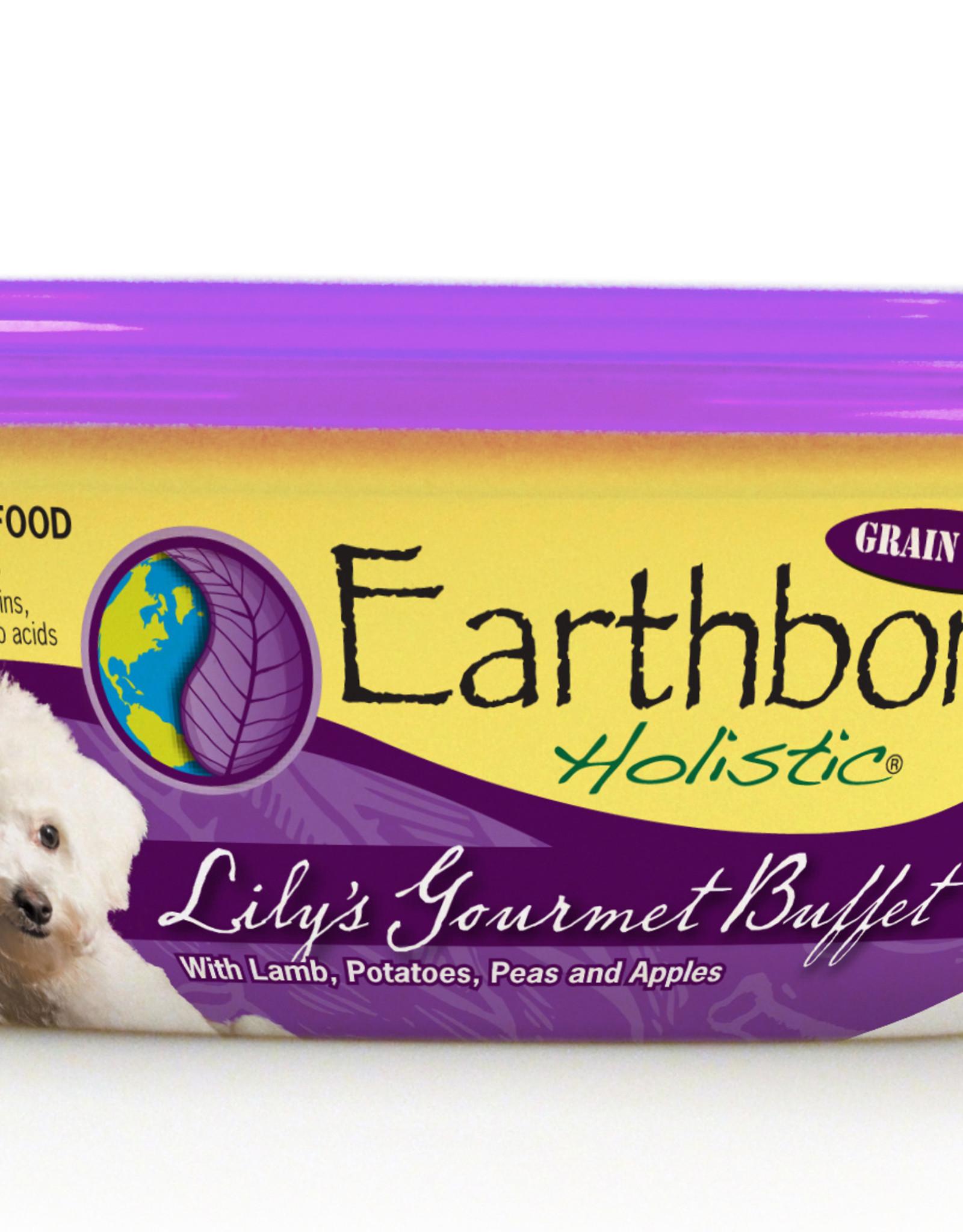 Earthborn Earthborn Holistic Canned Dog Food