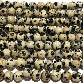 Natural Dalmatian Jasper 6mm Round