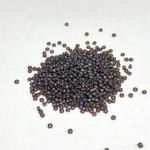 MIYUKI Rocaille 15-0 Transparent Matte Brown 8g