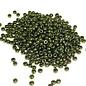 MIYUKI Rocaille 8-0 Metallic Olive 25g