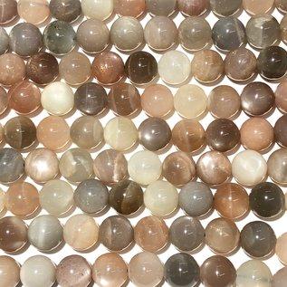 MOONSTONE Natural Colours 10mm Grade A