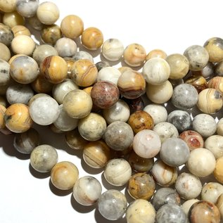 CRAZY LACE Agate Natural 8mm Round
