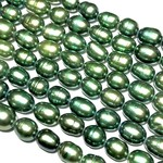 FRESH WATER PEARL Dyed Forest Green 7mm