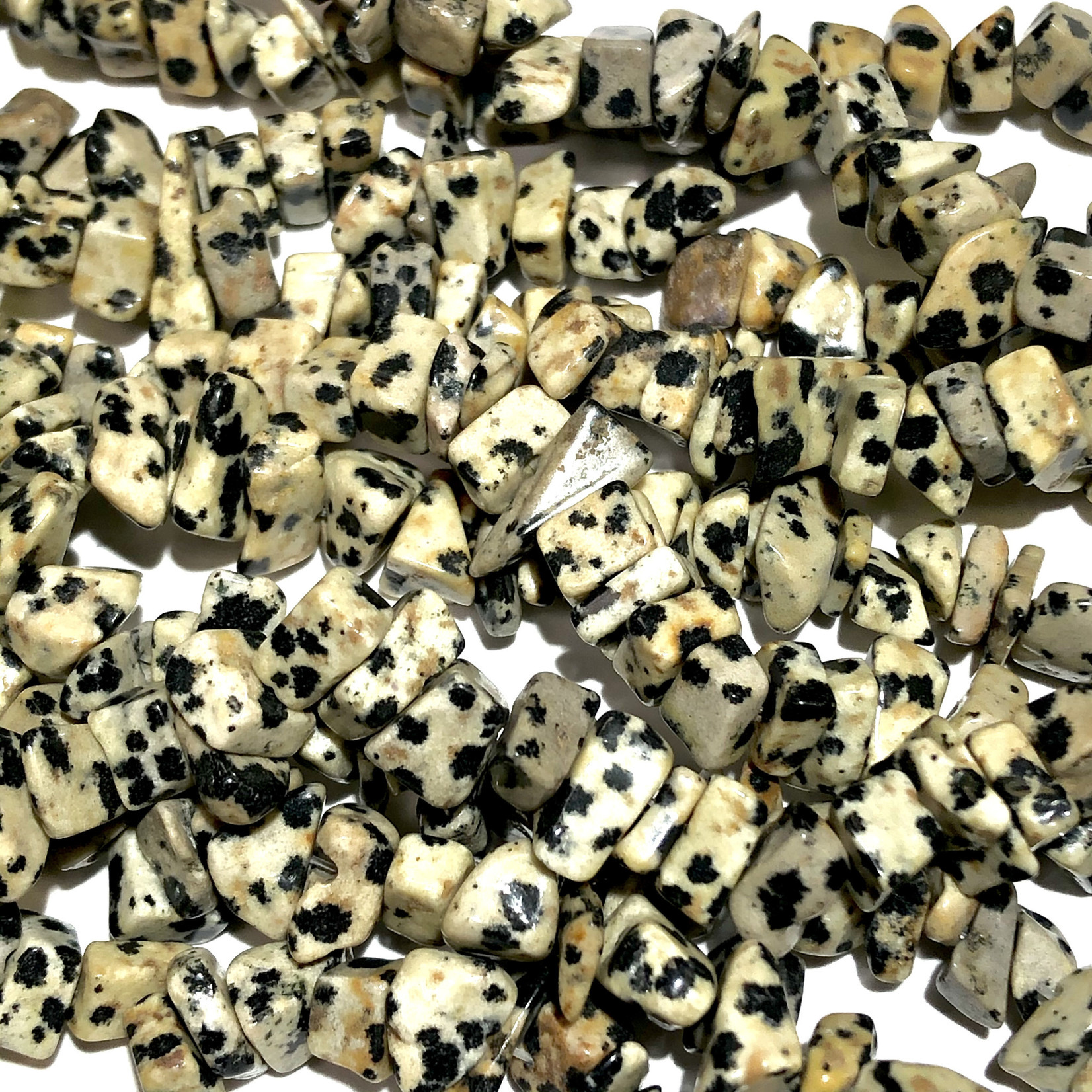 "DALMATIAN JASPER Natural Chip Beads 34"""